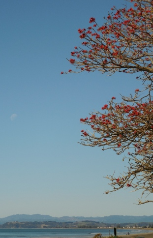 Afternoon moon .West End Beach